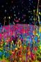 Colors Drops IPhone Wallpaper wallpapers