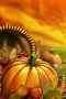 Halloween Pumpkins Fruits IPhone Wallpaper wallpapers