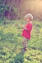 Little Boy With Flowers IPhone Wallpaper wallpapers