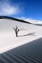 Sand Dune IPhone Wallpaper wallpapers