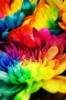 Colors Of The Flowers IPhone Wallpaper wallpapers