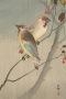 Art Ohara Koson Birds IPhone Wallpaper wallpapers