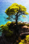 Skopelos Island IPhone Wallpaper wallpapers