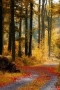 Fallen Autumn Leaves IPhone Wallpaper wallpapers
