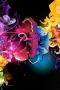 Rainbow Flowers 3D IPhone Wallpaper wallpapers