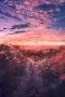 Sunset Glow IPhone Wallpaper wallpapers
