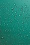 Green Water Droplets IPhone Wallpaper wallpapers
