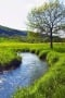Spring Little River Green Mountain IPhone Wallpaper wallpapers