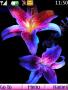 Neon Flowers Nokia Theme Free Mobile Themes