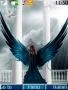 Bird Lady themes