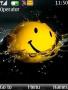 Smiley themes