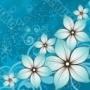 Flowers Nice themes