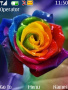Colorful Flower themes
