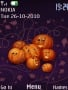 Pumpkins themes