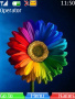 Abstract Rainbow Flower S40 Theme Free Mobile Themes