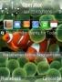 Iphone Theme themes