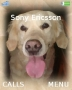 My Doggy Theme themes