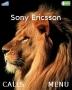 Lion Theme themes