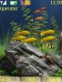Aquarium Nokia Theme themes