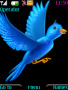 Blue Bird Nokia Theme Free Mobile Themes