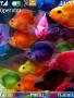Fish Animated Theme themes