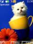 Cat themes