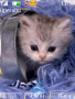 Sweet Cat themes
