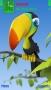 3D Tucan Bird themes