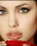 Angelina Jolie themes