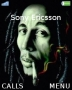 Bob Marley themes