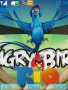 Angry Birds Rio themes