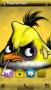 Angry Bird Yellow themes