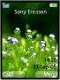 Grass Dew Theme themes