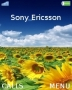 Sunflowers themes
