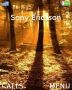 Sun Ray In The Woods themes