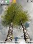 Beautiful Trees Nokia S40 Theme themes