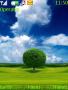 Beautiful Tree Nokia Theme themes