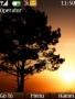 Sunset Tree Nokia Theme themes