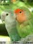 Parrot Nokia Theme themes