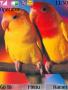 Parrot Nokia S40 Theme themes
