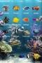 Aquarium Fish themes