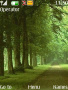 Beautiful  Green Nature themes