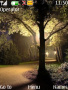 Light And Nature themes