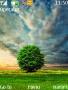 Green Tree themes