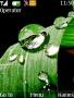 Water Drops themes