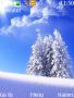 White Nature themes