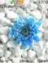Blue Flower themes
