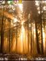 Sunlights themes