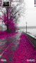 Pink Tree  Free Mobile Themes