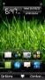 Grass themes